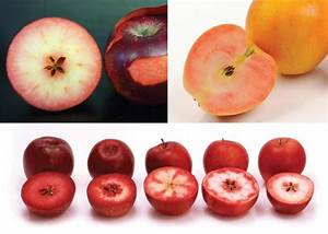 Red-fleshed apples | Good Fruit Grower