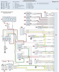 Peugeot 206 Hdi Diesel Engine Management System Part 2 Wiring Diagrams