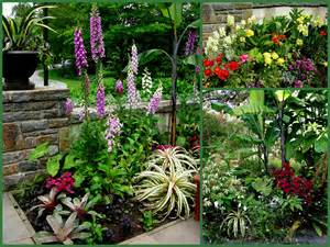 Unique Vegetable Gardens