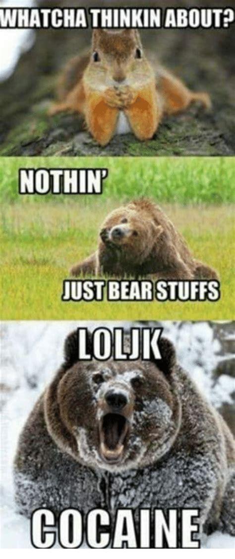 Bear Stuff Meme - bear stuff meme 28 images 25 best memes about bear stuff bear stuff memes confession bear