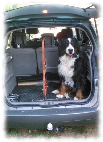 s 233 paration coffre pour grand chien et bagages construction bouvier bernois fiche et