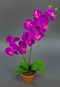 Kunstblumen Orchideen Topf : orchidee real touch 60cm fuchsia im topf ga k nstliche blumen orchideen kunstpflanzen ~ Whattoseeinmadrid.com Haus und Dekorationen