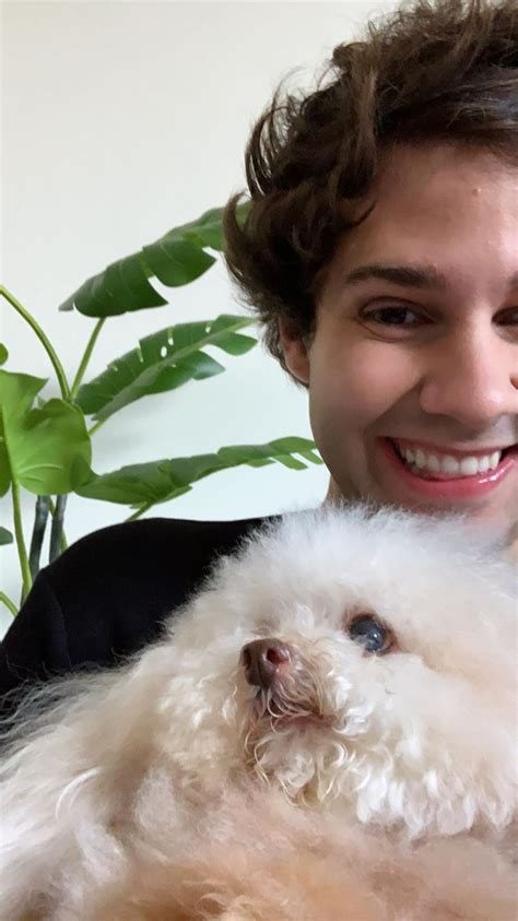 Online shopping for the latest electronics, fashion, phone accessories, computer electronics, toys, home&garden, home appliances, tools, home improvement. david dobrik wallpaper ;) (With images)   David dobrik ...
