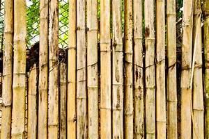 Sichtschutz Aus Bambus Wetterfest Und Natrlich 2