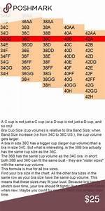 C Cup Isn 39 T Just A C Cup D Cup Isn 39 T Just D Cup Sister