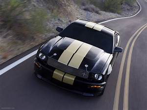 Ford Shelby GT-H Exotic Car Wallpaper #003 of 30 : Diesel Station