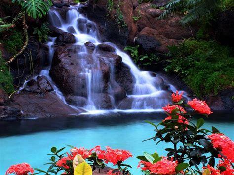 tropical waterfall wallpaper wallpaperscom