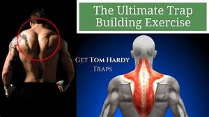 The Ultimate Traps Exercise  Get Traps Like Tom Hardy