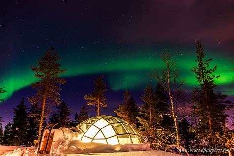 Northern Lights Igloo by Northern Lights Our Igloo In Kakslauttanen Finland
