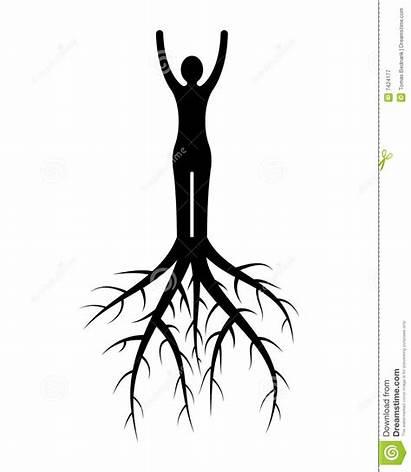 Roots Woman Radici Donna Della Tree Wortels