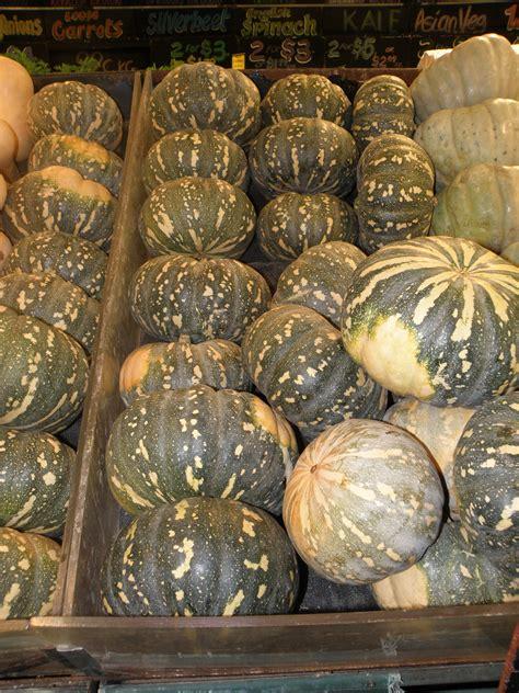 growing pumpkins  western australia agriculture  food