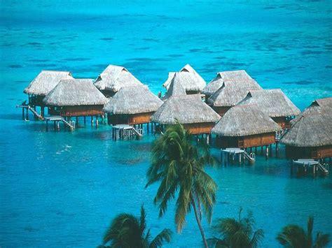 berlibur  hawai panduan wisata amerika