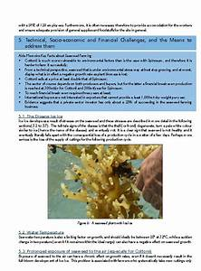 Soilless Gardening  Hydroponics  Fish Culture  Aquaponics