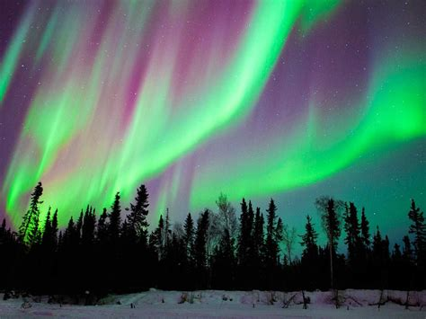 what time can we see the northern lights tonight the only northern lights guide you need cond 233 nast