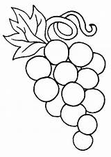 Coloring Pages Grapes Grape Para sketch template