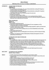 Risk Controller Resume Samples
