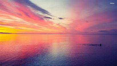 Sunset Beach Pink Colorful Wallpapers Sunsets Desktop