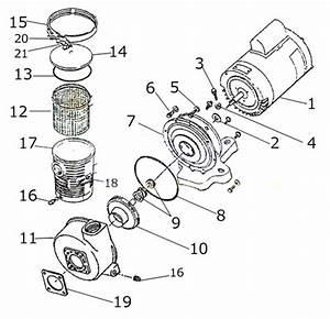 Pentair Americana Pump Diagram- American Products-
