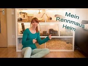 Meerschweinchen Gehege Ikea : rennmaus gehege kallax ikea youtube meerschweinchen rennmaus gehege hamster gehege und ~ Orissabook.com Haus und Dekorationen