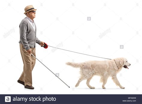 Blind Man Dog Stock Photos & Blind Man Dog Stock Images