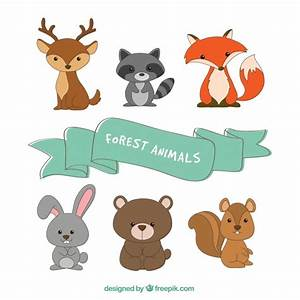 Animales Del Bosque Vinilos Infantiles Animales Del Bosque Ciervo Oso Lechuza Zorro Top