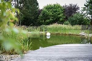 Was Kostet Ein Pool Im Garten : was kostet ein schwimmteich kosten schwimmteich teich oder badeteich yasiflor gartenteich ~ Sanjose-hotels-ca.com Haus und Dekorationen