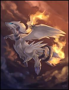 Reshiram - Pokémon - Image #459904 - Zerochan Anime Image ...