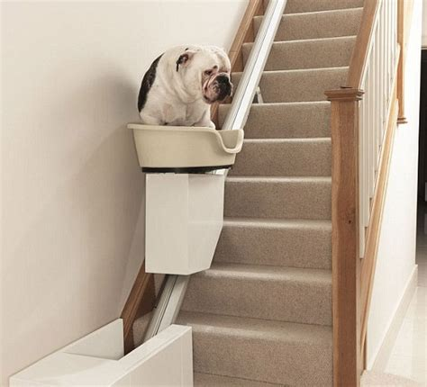 expensive dog stair lift