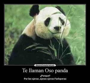 Te llaman Oso panda Desmotivaciones