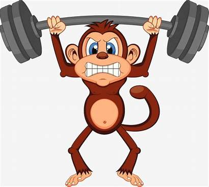 Clipart Weights Lift Lifting Strenuous Sweaty Monkeys