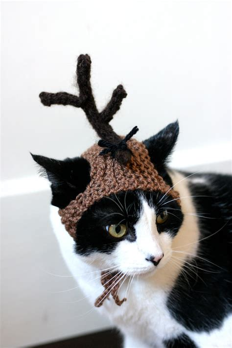 max  dog grinch cat hat christmas dr seuss costume