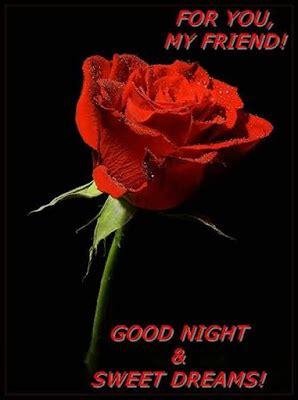 red rose good night wallpaper gallery