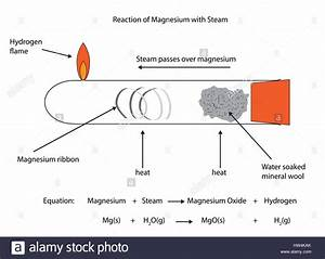 Labelled Diagram Of Magnesium Reacting With Steam  Vector
