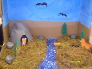Pin Tiger Habitat Diorama Image Search Results on Pinterest
