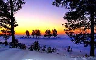 winter dusk wallpaper
