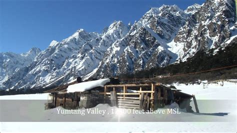 yumthang valley north sikkim  photographic journey hd