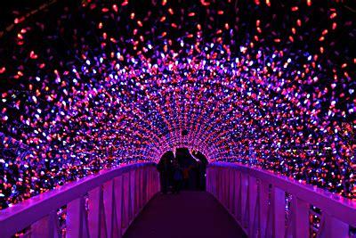 danz family rhema christmas lights