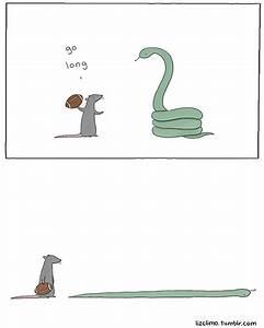 Go Long | Snake, Mice and Comic