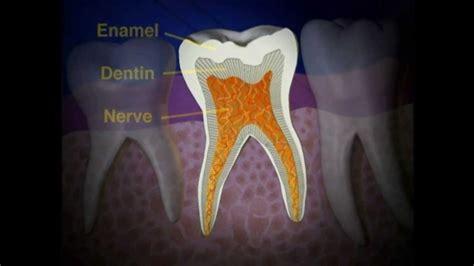 pulpectomy  save nerve damaged tooth lake merritt