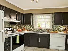 painting kitchen cabinets ideas home renovation painting kitchen cabinets black fabulous in interior