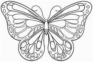 Pin, Auf, Ausmalbilder, Schmetterlinge
