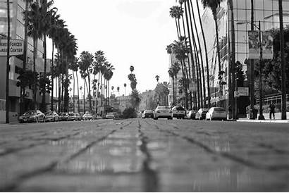 Hollywood Blvd Boulevard Jesse Phone Desktop Wallpapersafari