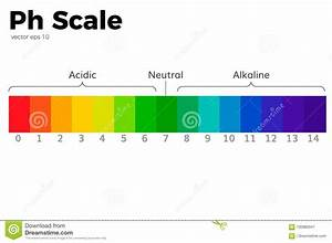 The pH scale stock vector. Illustration of concentration ...  Ph