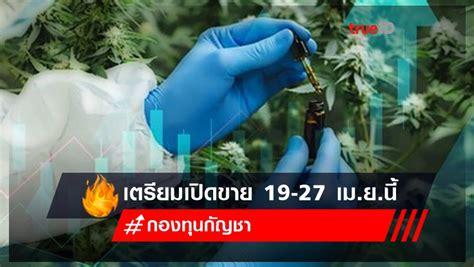 MFC ตั้ง กองทุนกัญชา เจ้าแรกในไทย เตรียมเปิดขาย 19-27 เม.ย.นี้