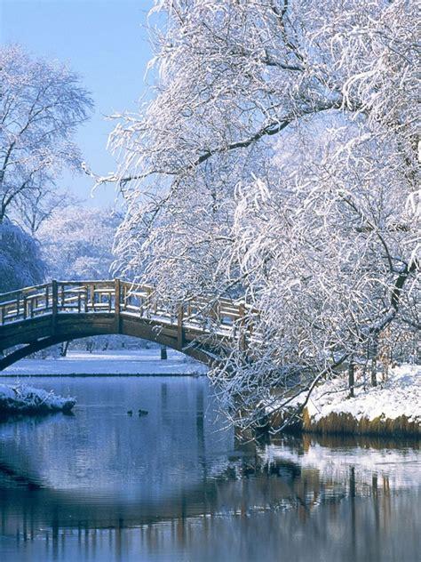 Anime Winter Scenery Wallpaper - 768x1024 winter scenery wallpaper