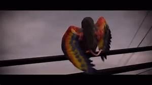 Ratbird Cloudywithachanceofmeatballs GIF - Ratbird ...