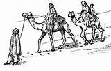 Camel Coloring Caravan Pages Drawings Bestofcoloring sketch template