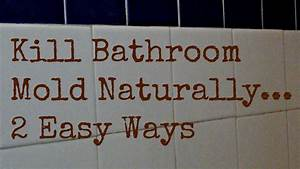 How to get rid of bathroom mold naturally 2 ways to kill for How to get rid of mold in the bathroom walls