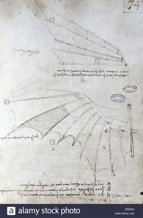 Macchine Volanti Di Leonardo Da Vinci by Da Vinci Flying Machine Stock Photos Da Vinci Flying