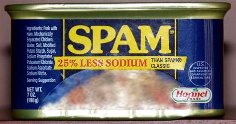 Spam (food) | Mediander | Connects
